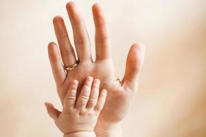 Babypalme auf der Handfläche ihrer Mutter.