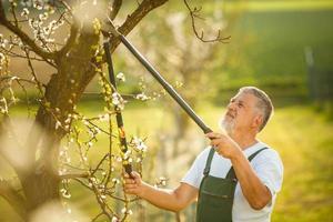 Porträt eines schönen älteren Mannes Gartenarbeit foto
