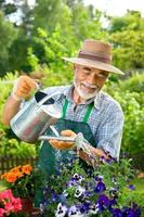 lächelnder älterer Mann, der Wasser im Garten im Freien gießt foto