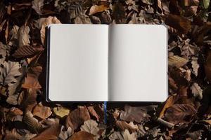 Herbstlaub und leeres Notizbuch