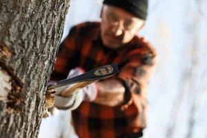 Holzfäller Baum mit Axt schneiden foto