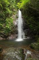Wasserfall und frisches Grün (Tokio Hinohara Haraizawa Wasserfall) foto