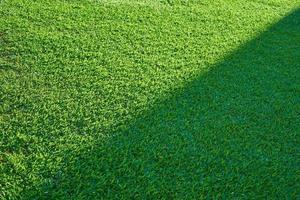 grüne Grasbeschaffenheit von einem Feld mit Halbschatten foto