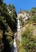 natürliche Schönheit der Himalaya, Waldzone foto