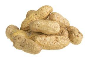 Nahaufnahme von Erdnuss