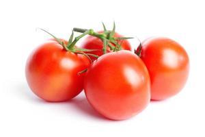 Tomate auf Weiß foto