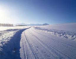 Straße durch verschneiten Wald foto