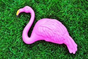 der rosa Flamingo foto