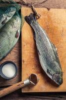 frisch gefangene Forelle zubereiten foto