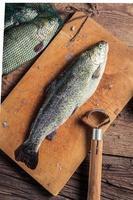 frisch gefangenen Fisch zubereiten foto