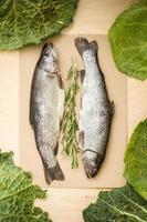 roher Fisch mit Kräuter- und Kohlblättern foto