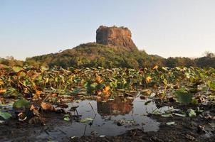 sigiriya Löwenfelsenfestung in Sri Lanka foto