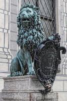 bayerischer Löwe foto
