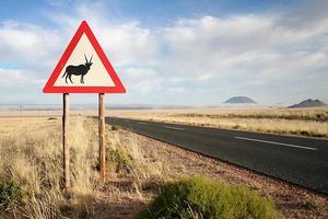 Oryx Verkehrszeichen foto
