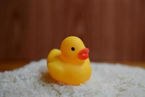 Ente auf Reis foto