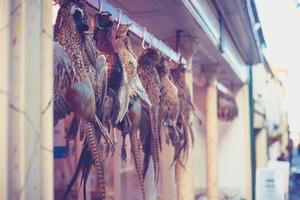 Fasane hängen vor der Metzgerei foto