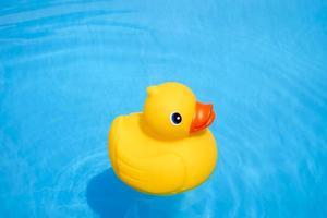 gelbe Gummiente im Pool foto