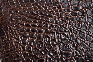 Krokodilhaut Textur foto