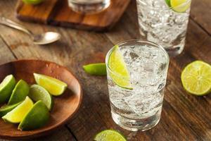 alkoholischer Gin Tonic