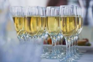 Reihe verschiedenfarbiger Alkoholcocktails auf Event-Open-Air-Party