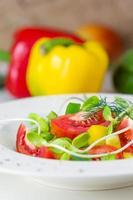 frischer Frühlingssalat. foto