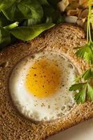 Ei in einem Korb