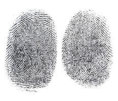 Fingerabdruck-Rätsel