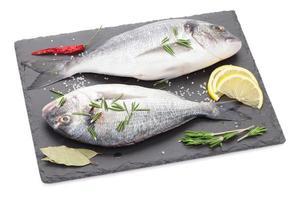 frischer Dorado Fisch mit Gewürzen foto