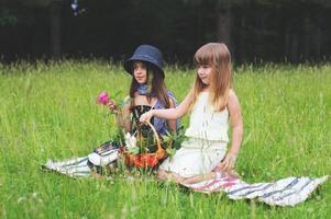 Spiel im Gras3 foto