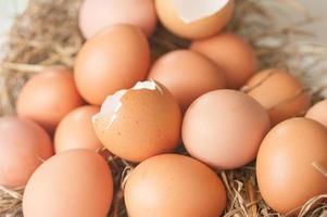 zerbrochenes Ei in Gruppe