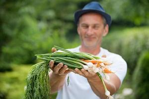 Mann mit Hut hält frisch geerntete Karotten und Frühlingszwiebeln foto