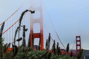 neblige goldene Torbrücke foto