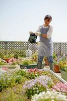 Gartenarbeit foto