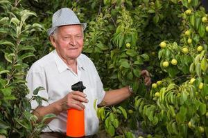 Pflanzenschutz foto