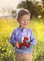 kleiner Junge, der Spaß auf einer Wiese hat