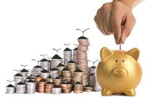 Sparschwein erhöht Ihre Finanzen wächst foto