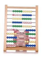 Berechnung der Sparschweine foto