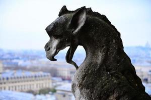 Wasserspeier bei Notre Dame foto