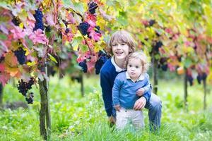 süßer lachender Bruder und kleine Schwester im sonnigen Weinberg