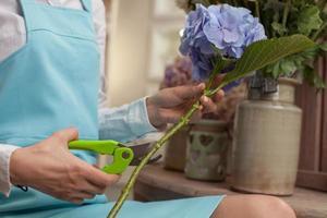 qualifizierte junge Verkäuferin kümmert sich um die Blumen foto