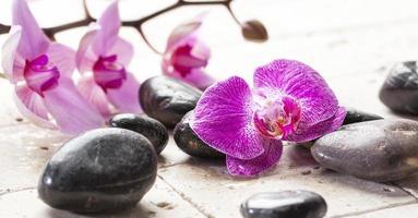 Zen Weiblichkeit mit Orchideenblüten und Massagesteinen foto