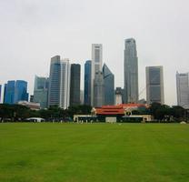hohes Gebäude und grüner Park foto