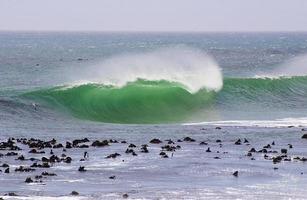 grüne Welle, die über einem flachen Riff bricht
