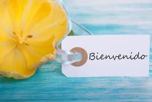 Tag mit Bienvenido foto