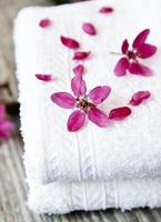 Spa-Blumen-Nahaufnahme foto