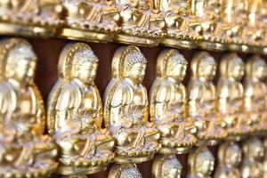 zehntausend goldene Buddhas foto