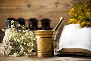 Kräutermedizin und Buch