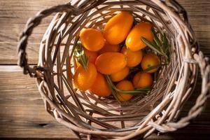 Kumquat. foto