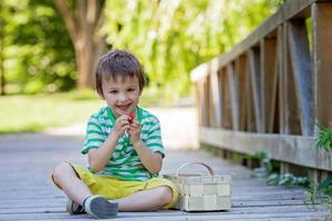 süßer kleiner kaukasischer Junge, der Erdbeeren im Park isst foto