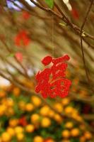 traditionelles chinesisches Symbol für die Ankunft des Glücks foto